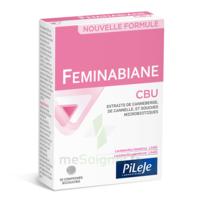 Pileje Feminabiane Cbu 30 Comprimés Bicouches à VINCENNES