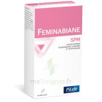 Pileje Feminabiane Spm 80 Gélules à VINCENNES