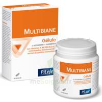 Pileje Multibiane 30 Gélules à VINCENNES
