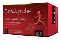 Santé Verte Circulymphe Triple Actions B/60 à VINCENNES