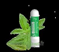 Puressentiel Respiratoire Inhaleur Respiratoire Aux 19 Huiles Essentielles - 1 Ml à VINCENNES