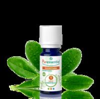 Puressentiel Huiles essentielles - HEBBD Ravintsara BIO* - 5 ml à VINCENNES