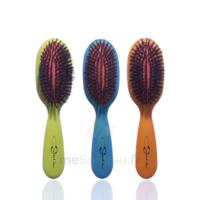 Cartel Brosse Cheveux Pneumatique Sanglier Médium à VINCENNES