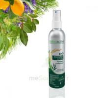 Assaini'spray Huiles essentielles BIO Fl/200ml à VINCENNES